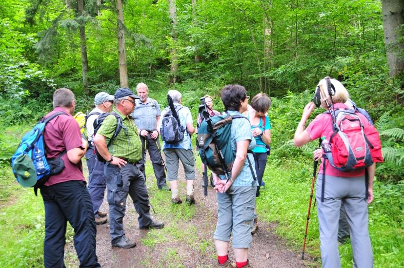 Klettersteig Calmont : Eifelverein marmagen ediger eller calmont klettersteig